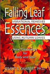 Falling Leaf Essences Vibrational Remedies Using Autumn Leaves by Grant R. Lambert