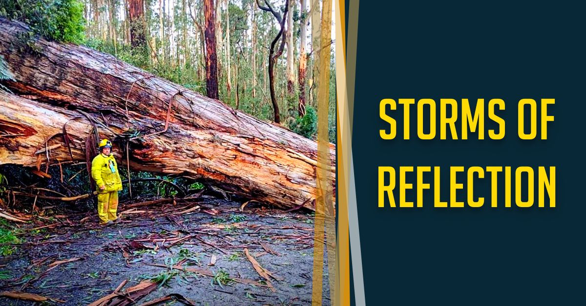 Read more about the article Storms of Reflection
